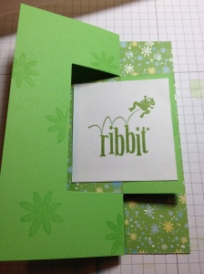 Front of Ribbit